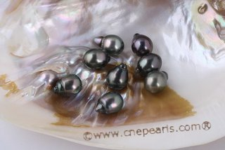 Btahiti1112A+ 11-12mm A+ Grade baroque circle Black loose Tahitian pearls, Drop shape