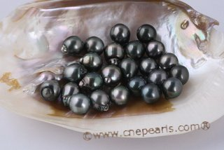 Btahiti1213A 12-13mm A Grade Circle Baroque loose Tahitian pearls in Drop Shape