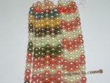 SHPS501 Multicolor rainbow shell pearl strands,14mm or 16mm