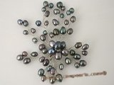 brooch054 18KGP black color freshwater rice pearl chandelier brooch